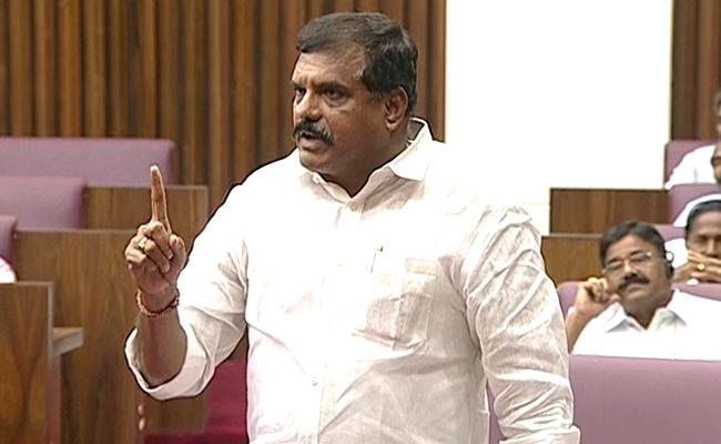 Botcha Satyanarayana Fires On TDP Leaders In Council - Sakshi