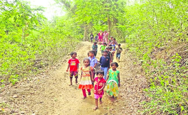 Students Will Go School Through Forest - Sakshi