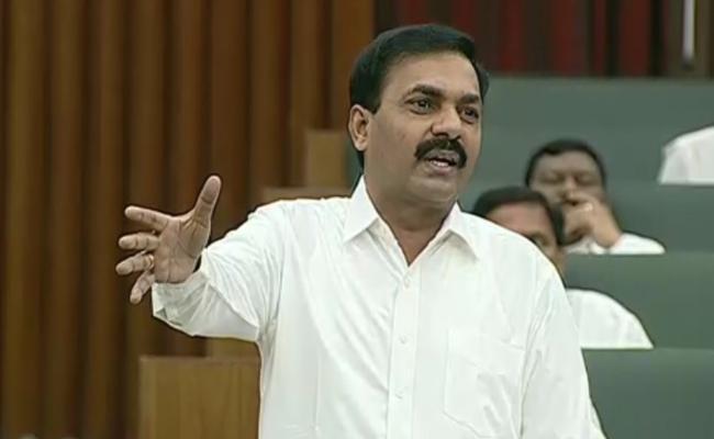 Kakani Govardhan Reddy Comments On TDP Leaders - Sakshi