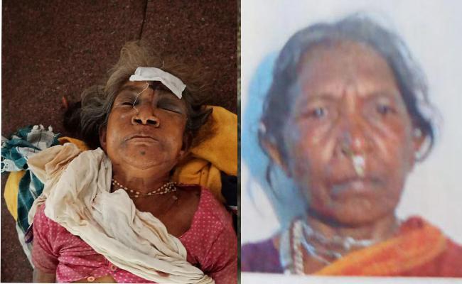 Elephants Killed Two Tribal People In Srikakulam ITDA - Sakshi