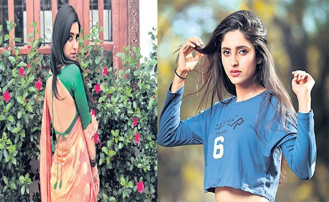 TV Actress Ayesha Chit Chat  With Sakshi