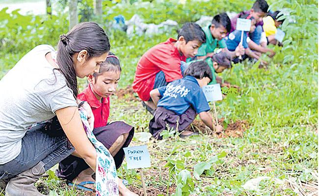 Philippines everyone who wants to read the degree must be planted at 10 plants - Sakshi