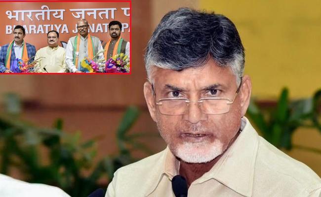 No Loss To TDP If Party MPs Change Into BJP Said By Chandrababu Naidu - Sakshi