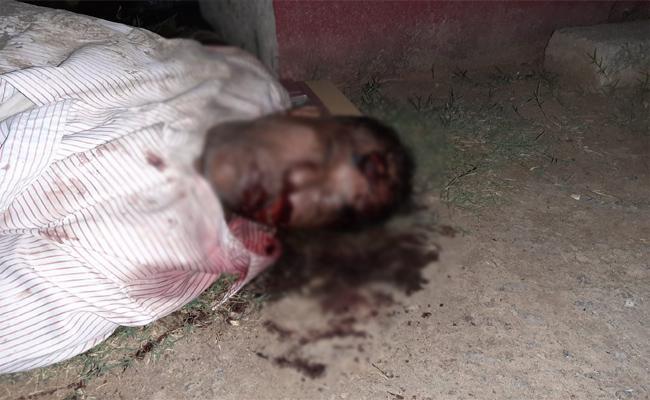 Son Killed Her Father Guntur - Sakshi