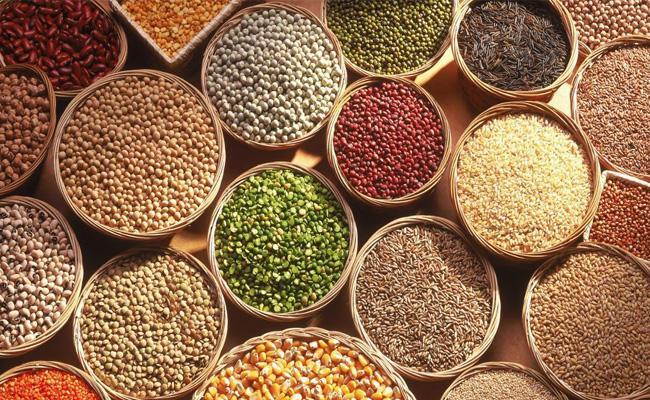 Kharif Season Seeds Is Coming To Khammam - Sakshi