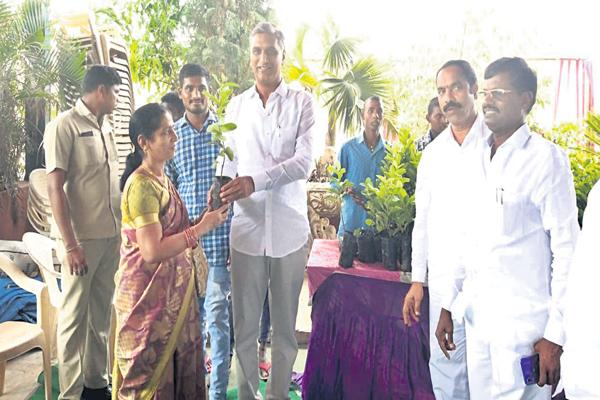 Distribution of plants to guests at the wedding - Sakshi