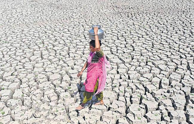 Desertification has increased in 90 per cent of states in India - Sakshi