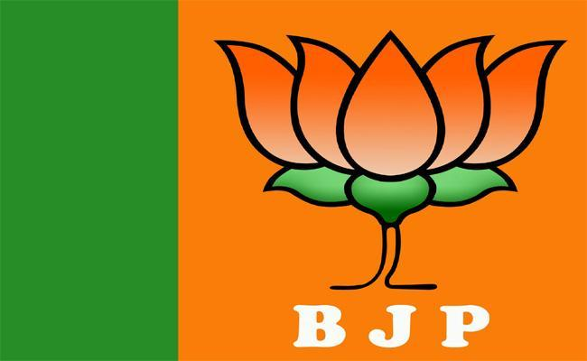 BJP Wants To Become Alternative For TRS - Sakshi