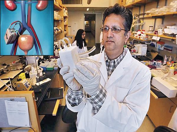 Artificial Kidney is coming soon - Sakshi