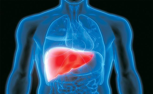 Counselling on Liver Transplantation - Sakshi