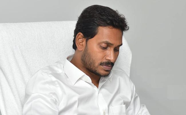 CM YS Jagan Directions To Officials Over Agrigold Case - Sakshi