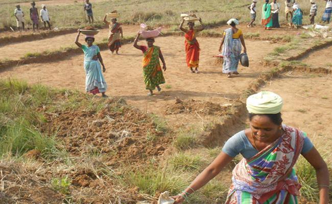 National Rural Employeement Workers Not Getting Salaries Properly in Vizianagaram - Sakshi
