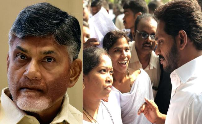 Vijaya Sai Reddy Fires On Chandrababu Naidu - Sakshi