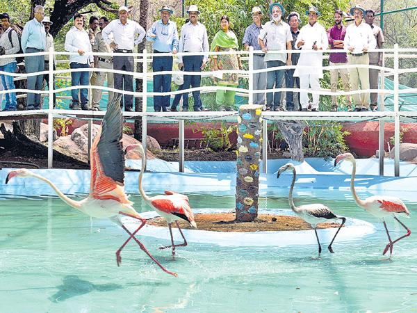 Zoo park should be the foremost in the country - Sakshi