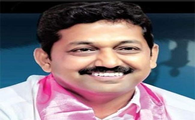 TRS Party Three Sets Won In MLC Elections 2019 - Sakshi