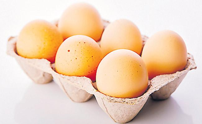 Eggs are not good for health - Sakshi