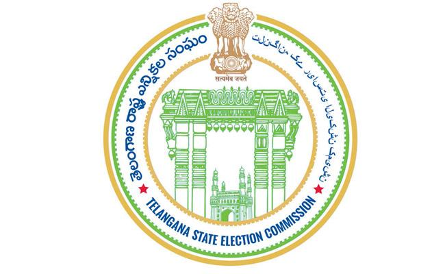 state election commission has completed arrangements for conducting elections - Sakshi