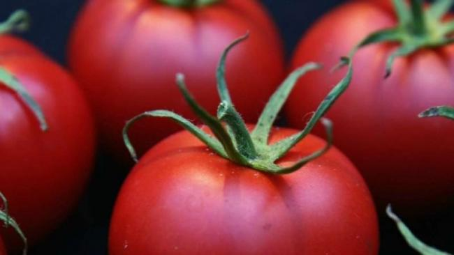 Unsalted Tomato Juice May Help Cut Heart Disease Risk - Sakshi