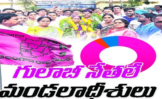 Telangana MPP Elections TRS Josh Nizamabad - Sakshi