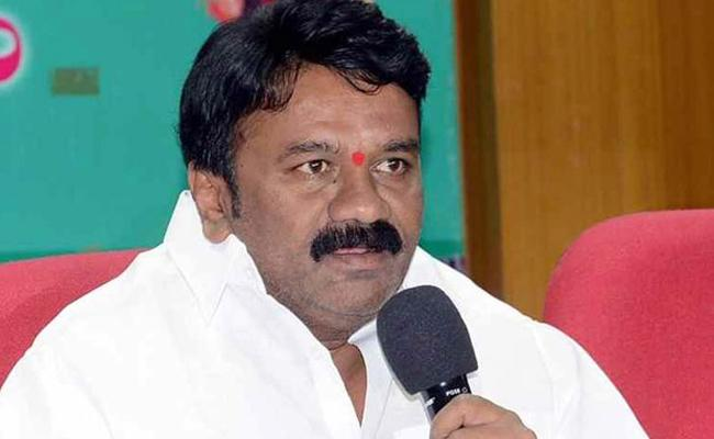 Talasani Srinivas Yadav Slams Congress Leaders Over Secretariat Visit - Sakshi