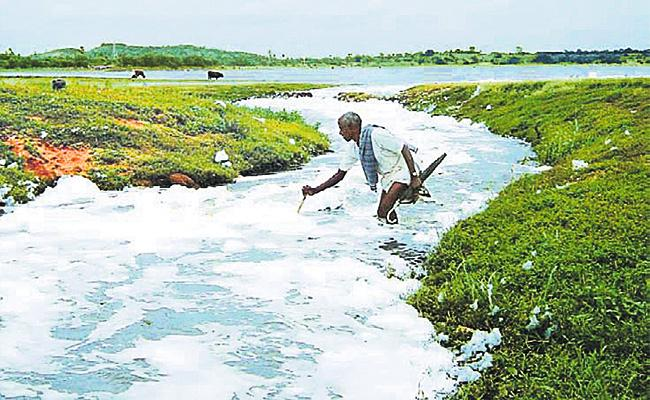 Hyderabad Lakes in Danger Zone - Sakshi
