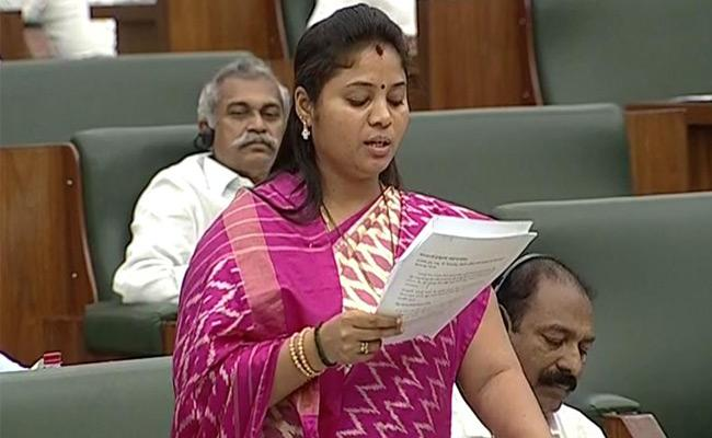AP Assembly Budget sessions Begin - Sakshi