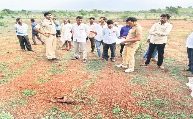 An Unidentified Baby Died Suspiciously At Zaheerabad - Sakshi