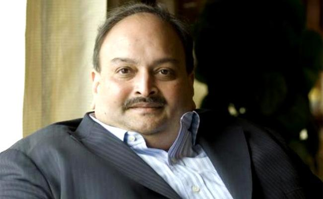 Ed Attaches Mehul Choksi  valuables worth 24.8 Crores in Dubai - Sakshi
