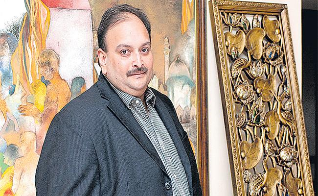 ED Foreclosure Mehul Choksi Assets - Sakshi