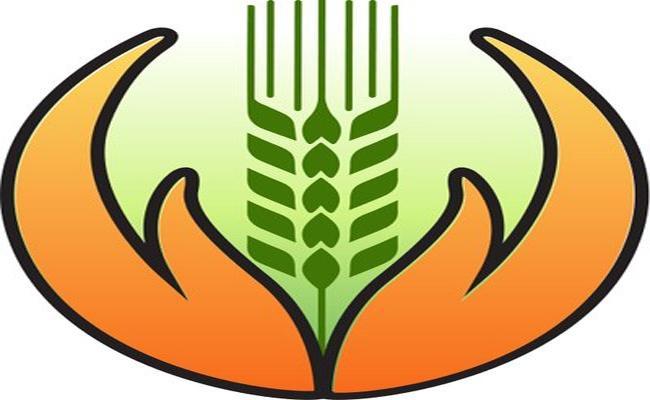 Fasal Bima Yojana Is Securing Farmers With Crop Insurance - Sakshi