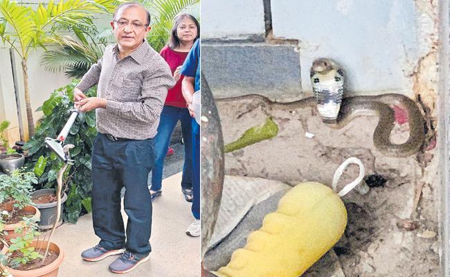 Rajeev Trivedi Catches Snake - Sakshi