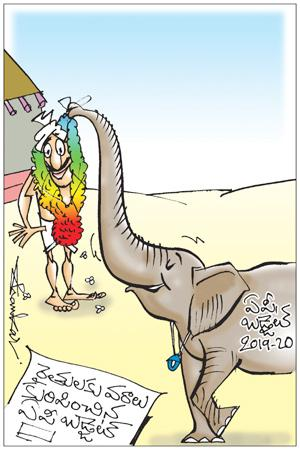 Sakshi Cartoon (13-07-2019