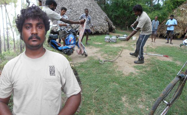 Snake Hunter Venkatesh Special Story - Sakshi