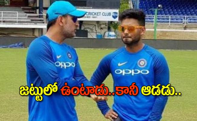 MS Dhoni will mentor Rishabh Pant for smooth transition - Sakshi