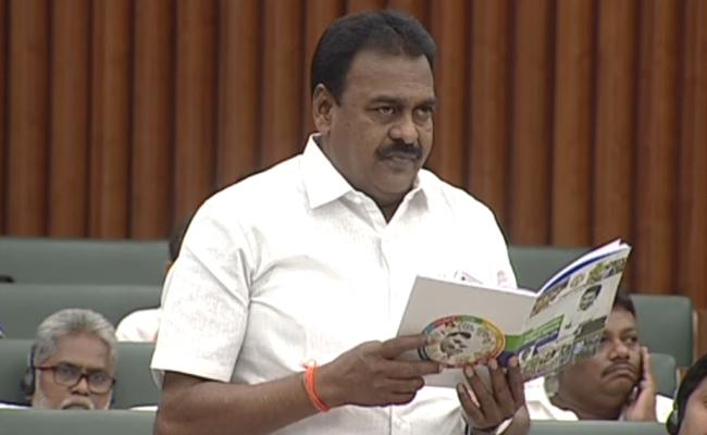 Janasena MLA Rapaka Varaprasad About CM YS Jagan In AP Assembly - Sakshi