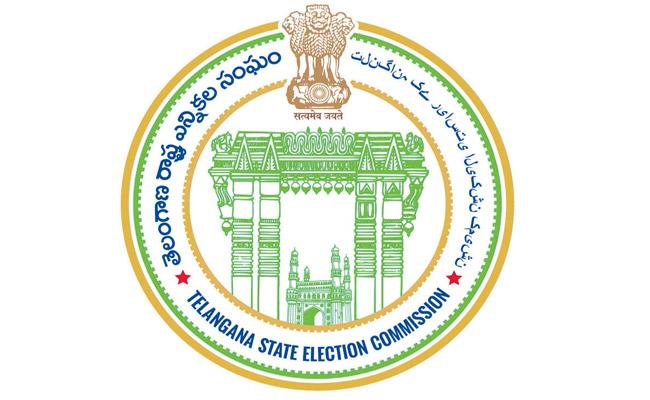 Telangana SEC Barred 2166 Candidates From Municipal Polls - Sakshi