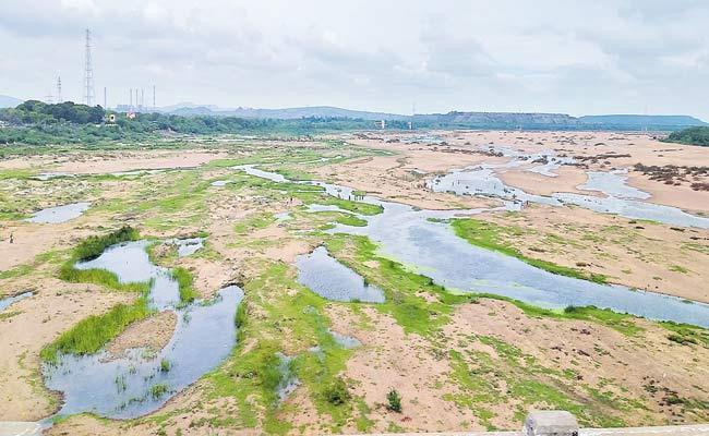Low Water Levels In Godavari River - Sakshi