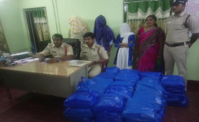 Police Arrested Ganja Smuggler Gang In West Godavari - Sakshi
