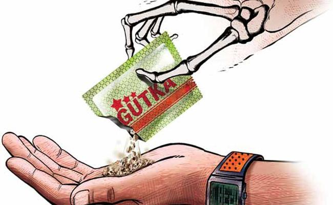 Gutka Business In Anantapur District Is Booming - Sakshi