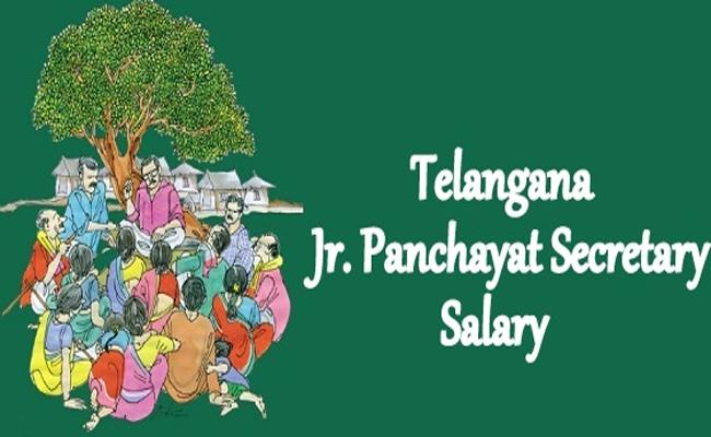 The Salaries of Junior Panchayat Secretaries Are Not Coming - Sakshi