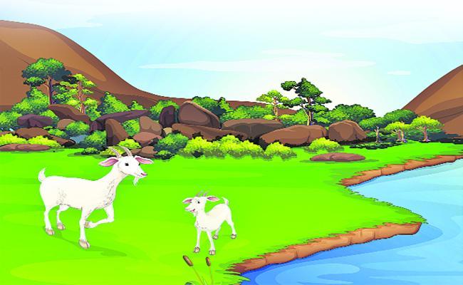 The Clever Goat Short Story For Kids - Sakshi