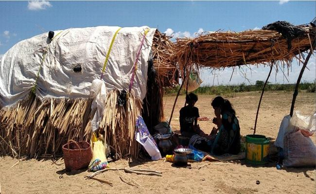A Tribal Family Living In Miserable Condition In The Coast Of Penna - Sakshi