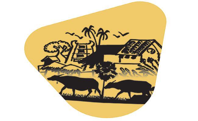 No Rainfall Farmers Problems In Telangana - Sakshi