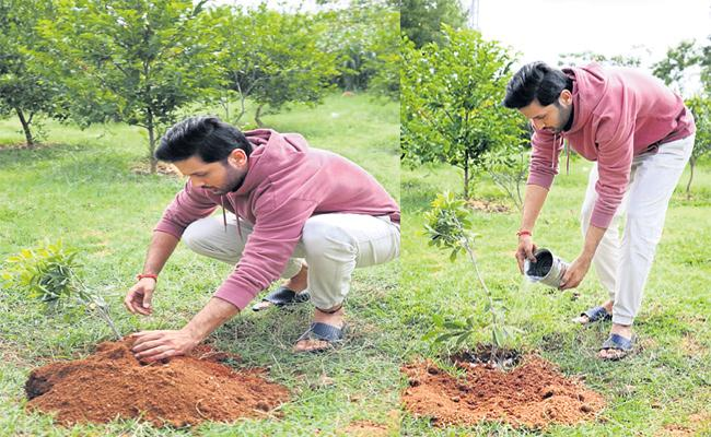Nithin Plants Tree For Gift A Smile Wish to KTR Birthday - Sakshi