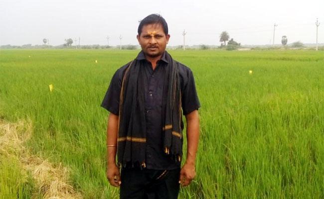 Software Engineer Rambabu Turns as Farmer In Vetapalem Prakasam - Sakshi