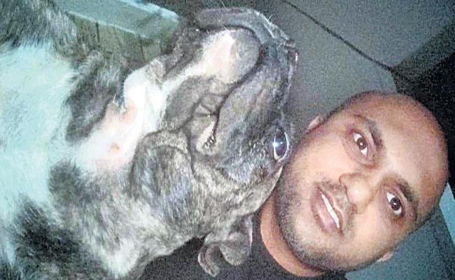 Stolen Pet Dog Find in Hyderabad - Sakshi