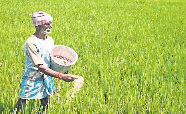 Andhra Pradesh Legislative Assembly passes Andhra Pradesh Corp Cultivator Rights Bill - Sakshi