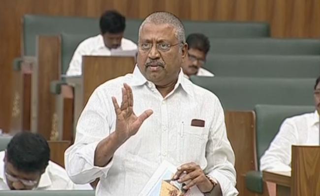 Samineni Udayabhanu Speech In AP Assembly On House Scheme - Sakshi
