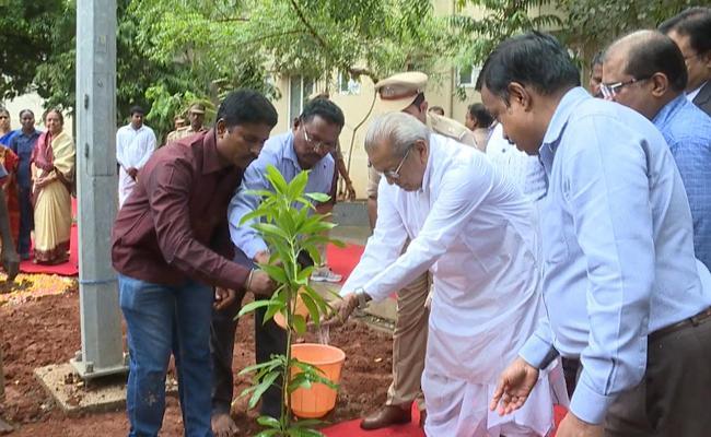 AP Governor Vishwa Bhushan Harichandan Plant Saplings At Raj Bhavan - Sakshi