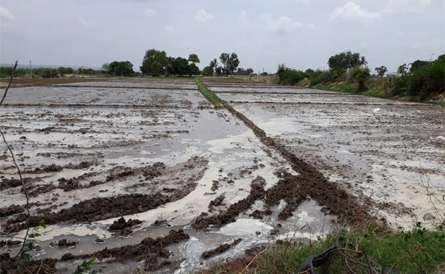 A 50 Acre Sand Quarry On The Banks Of The Penna River Remains In TDP Leader Possession - Sakshi